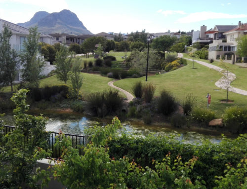 View up the estate to the Helderberg